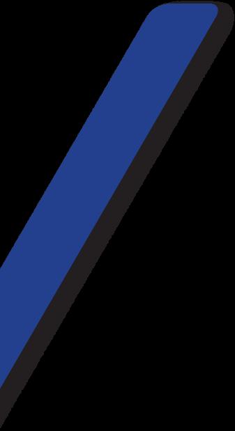 vetor-lateral-04